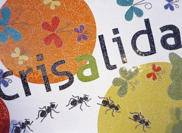 Crisálida, premio Integra 2013 de la Fundación BBVA