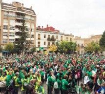 Verde y esperanza