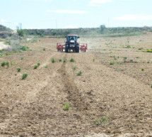 Asaja ve con preocupación las consecuencias de la sequía y heladas de abril
