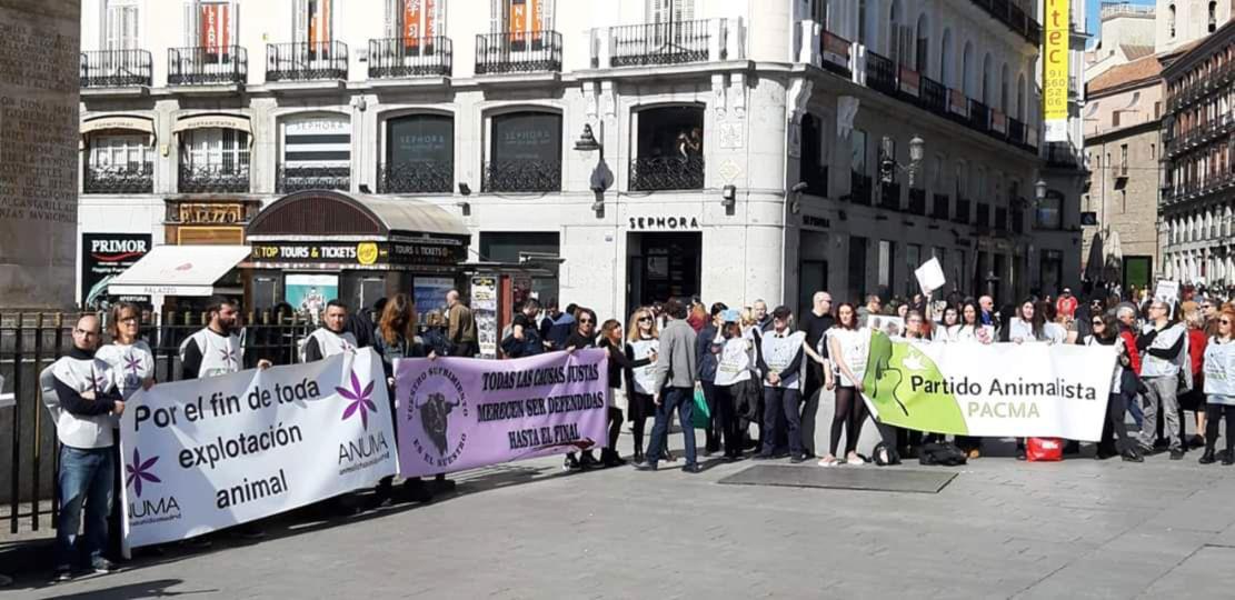 Concentración en Madrid contra el nuevo matadero de Pini